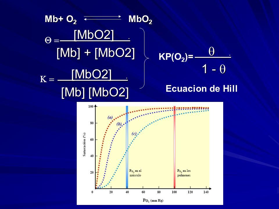 [MbO2] . [Mb] + [MbO2] q . 1 - q [MbO2] . [Mb] [MbO2] Mb+ O2 MbO2 Q =